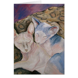 Sphinx Hairless kitty cat Greeting card