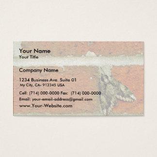 Sphinx moth business card
