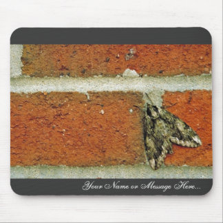 Sphinx moth mouse pad