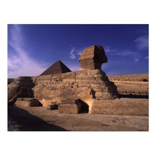 Sphinx Pyramid at Giza Postcard