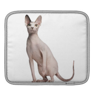 Sphynx (13 months old) sleeve for iPads