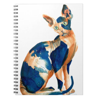 Sphynx 6 notebook