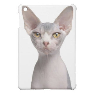 Sphynx (7 months old) case for the iPad mini
