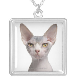 Sphynx (7 months old) silver plated necklace