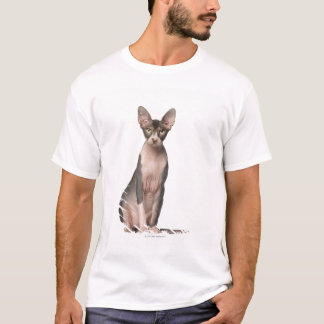 Sphynx (7 months old) sitting T-Shirt