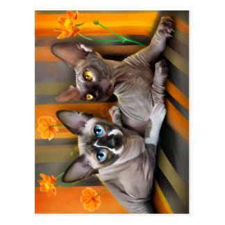 Sphynx Cat in flowers. Postcard