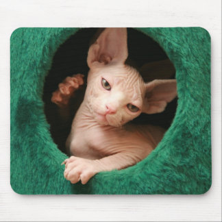 Sphynx Cat Mousepad | GoSphynx.com