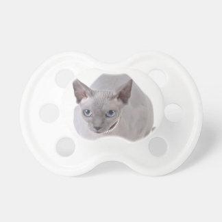 Sphynx cat pacifier