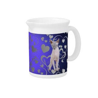 Sphynx cat pitcher