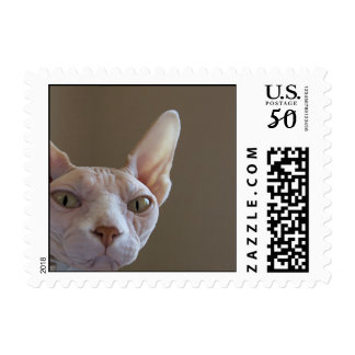 Sphynx Cat Postage