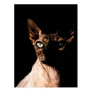 Sphynx cat postcard