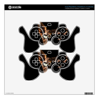 Sphynx cat PS3 controller decal