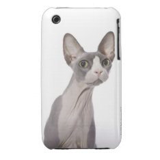 Sphynx Cat with surprised expression Case-Mate iPhone 3 Case at Zazzle