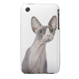 Sphynx Cat with surprised expression Case-Mate iPhone 3 Case