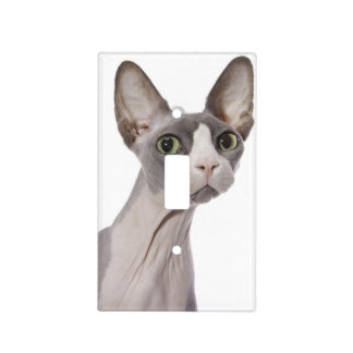 Sphynx Cat with surprised expression Light Switch Cover