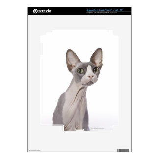 Sphynx Cat with surprised expression Skins For iPad 3