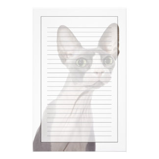Sphynx Cat with surprised expression Custom Stationery