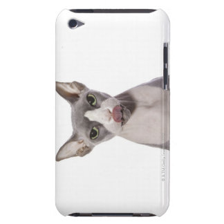 Sphynx Cat with tongue out Barely There iPod Cover