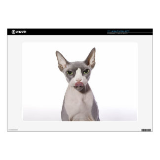 Sphynx Cat with tongue out Laptop Decal