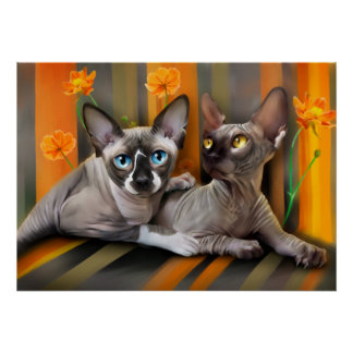 Sphynx cats poster