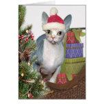Sphynx Christmas Card