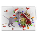 Sphynx Kitten Plays With Christmas Ornamants Cards