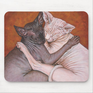Sphynx Sphinx Cat Cats Nap Time Mouse Pad