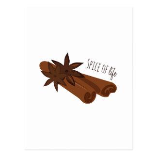 Spice of life postcard