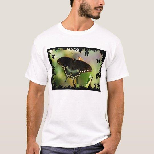 Spicebush Swallow Tail DSC_0119 T-Shirt