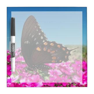 Spicebush Swallowtail Butterfly Dry-Erase Board