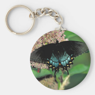 Spicebush swallowtail Buttterfly   Common milkweed Keychain