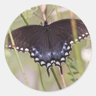 Spicebush Swallowtail Classic Round Sticker