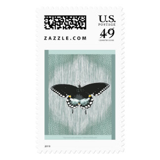 Spicebush Swallowtail Design Postage Stamp
