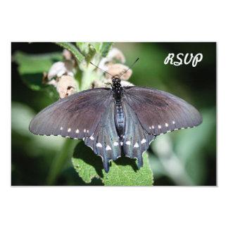 "Spicebush Swallowtail Papilio Troilus Invitación 3.5"" X 5"""