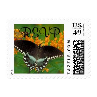 Spicebush Swallowtail - RSVP Postage