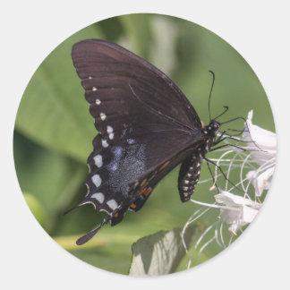 Spicebush Swallowtail Round Stickers