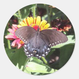 Spicebush Swallowtail Round Sticker