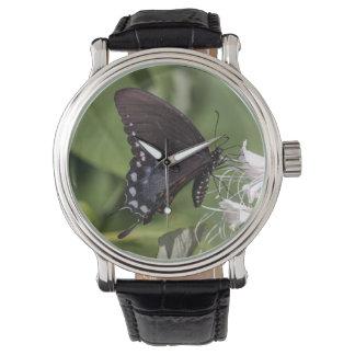 Spicebush Swallowtail Wristwatches