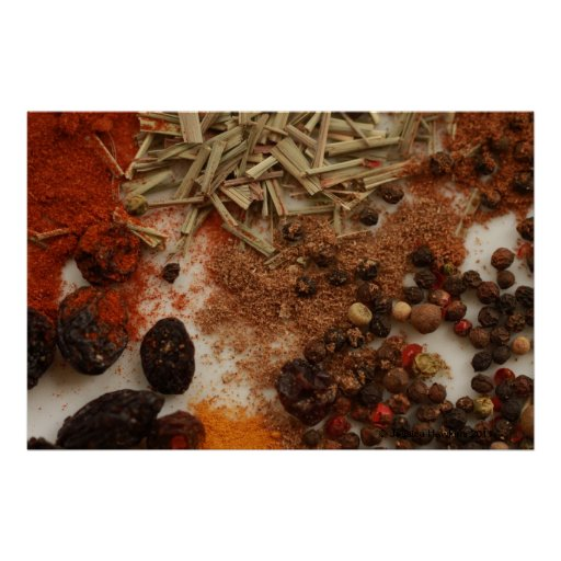 Spices and Condiments Poster