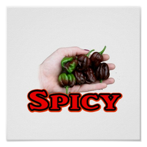 Spicy Chocolate habanero Hot Pepper Design Poster