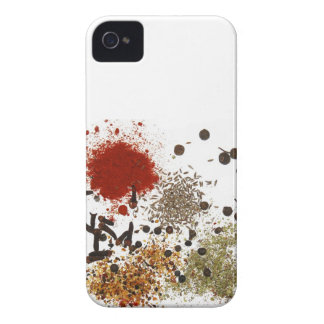 Spicy spices foodie top chef photo graphic 4S case