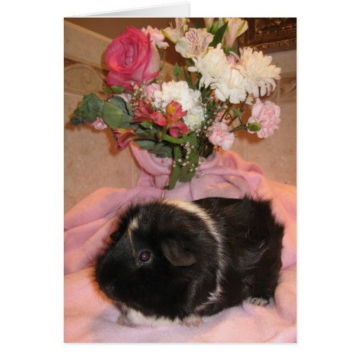 Spicy's Floral Valentine Greeting Card