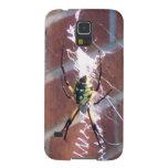 spider12 003.JPG Carcasas De Galaxy S5