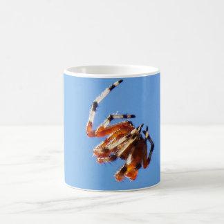 Spider 100_1305 coffee mug