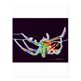 spider 1a postcard
