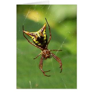 Spider 7334 card