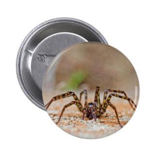 spider a button
