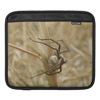 Spider and Egg Sac IPad Sleeve