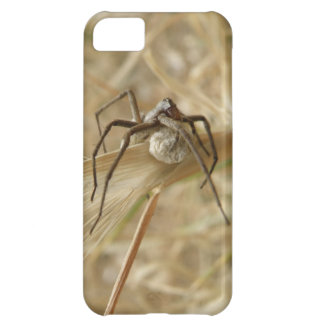 Spider and Egg Sac iPhone 5 Case