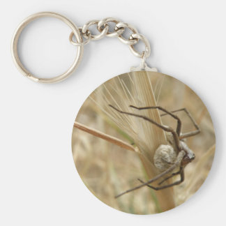 Spider and Egg Sac Keychain